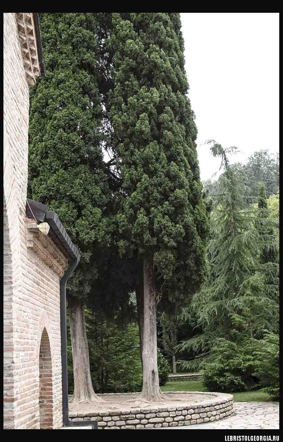 Монастырь Бодбе
