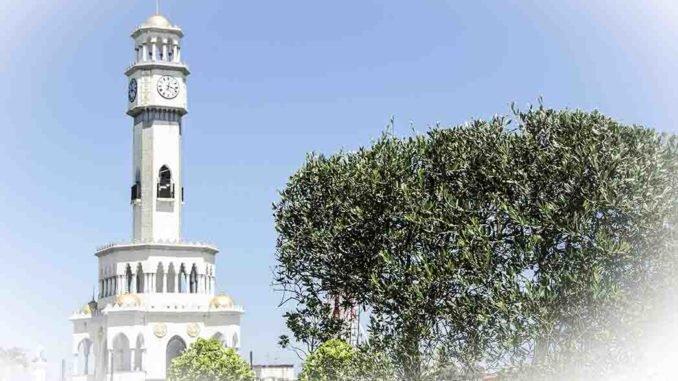 Башни Батуми