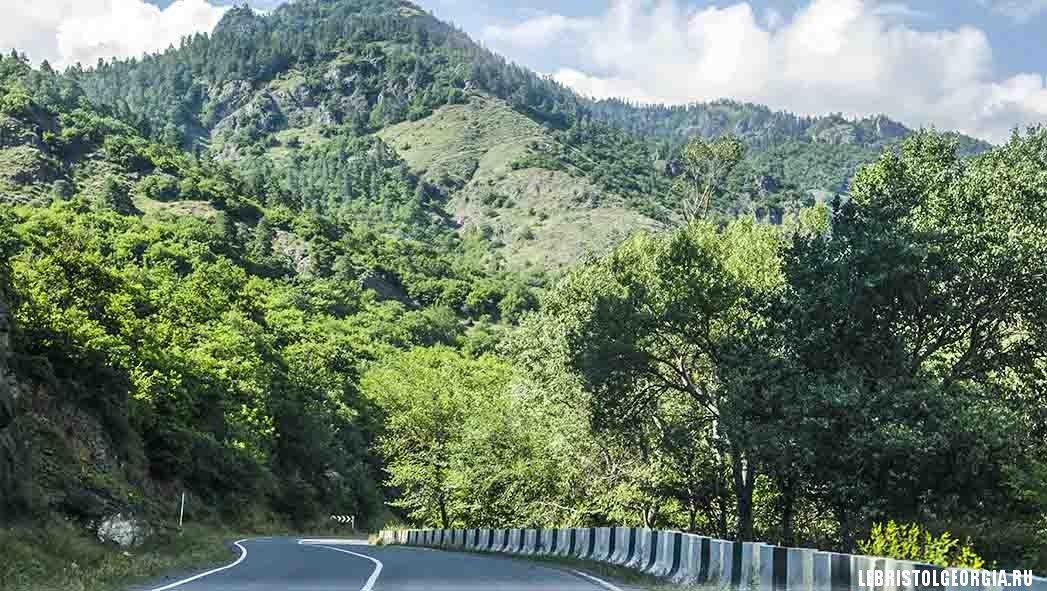 дорога в Ликани