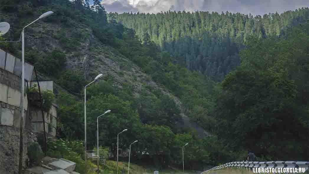 дорога из Боржоми в Ликани